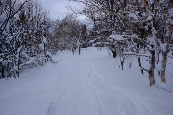 カムイ林間コース